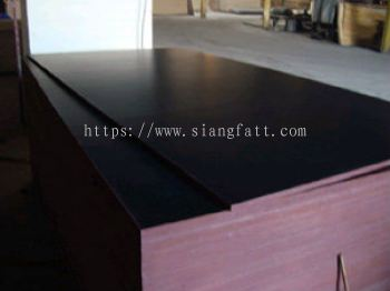 Tego Plywood / Phenolic Film Faced Plywood