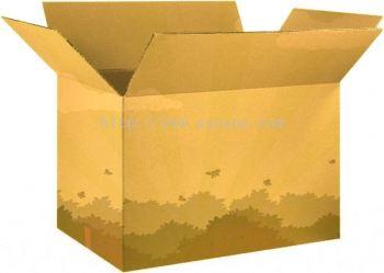 Printed or Plain Corrugated Box