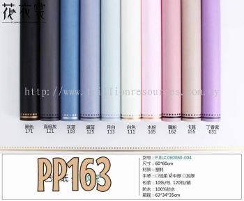 PP163