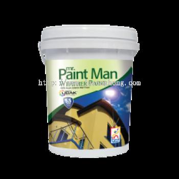 Mr Paint Man Weather Paint
