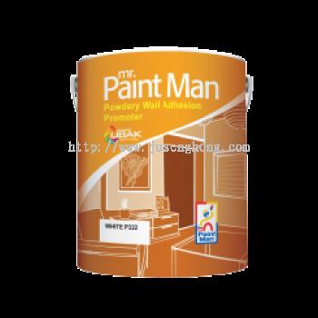 Mr Paint Man Powdery Wall Adhesion Promoter