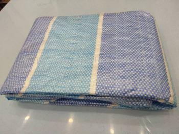 000527 BLUE&WHITE CANVAS