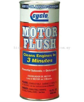 MOTOR FLUSH (C19)