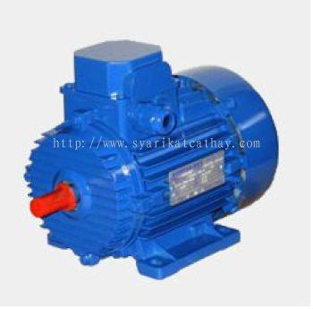 Tec Three Phase AC Induction Motor