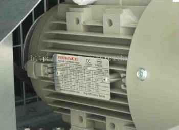 Branco Three Phase AC Induction Motor  Class F Insulation, IP55 Protection, IEC Standard