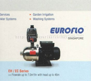 Euroflo Domestic Pump