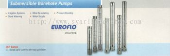 Euroflo Submersible Borehole Pump