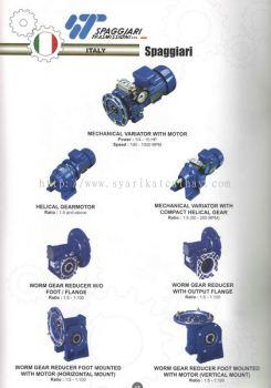 Spaggiari Mechanical Variotor, Helical Gear, Worm Gear