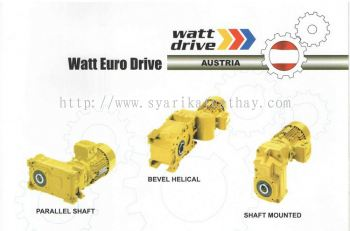 Watt Euro Drive Parallel Shaft, Bevel Helical, Shaft Mounted
