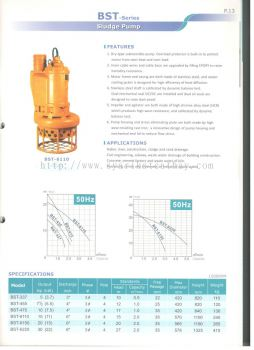 Sonho BST Series Sludge Pump
