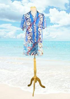 hawaii BM 02