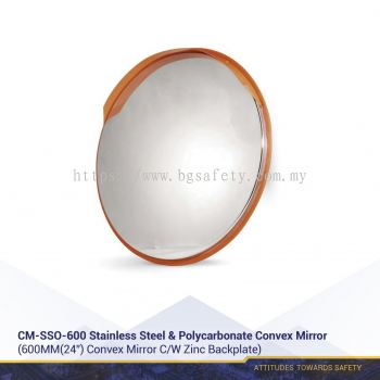 Stainless Steel & Polycarbonate Convex Mirror