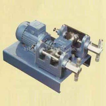 Duplex chemical dosing pump
