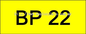 Number Plate BP22