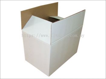 White Regular Slotted Carton Box
