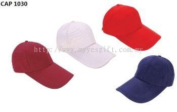 CAP 1030