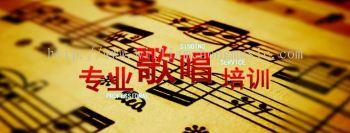 Professional Singing Training