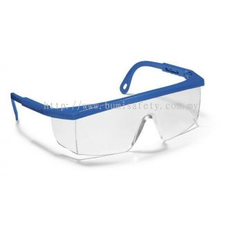 Ecosafe 46 Eyewear - Blue Frame