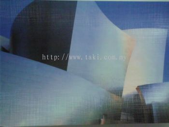 CD 804