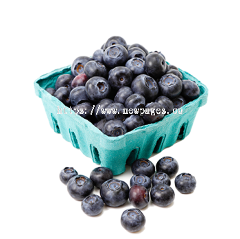 Blueberry - NEWPAGES NETWORK SDN BHD (.co)