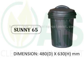 SUNNY 65
