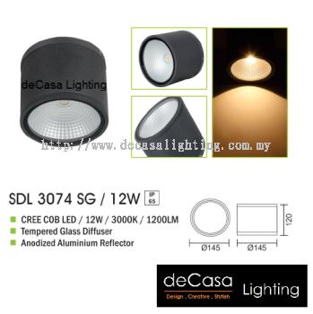 OUTDOOR LIGHT SDL 3074 SG 12W