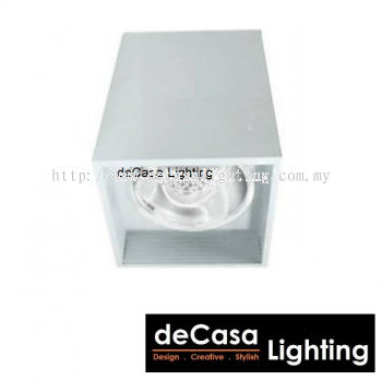 5'' SQUARE SURFACE DOWNLIGHT