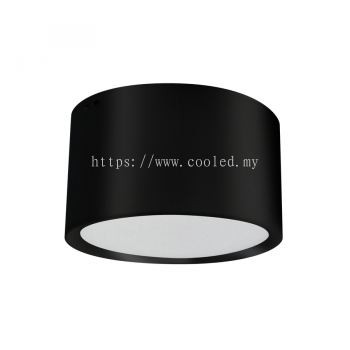lumiSF1100 9W LED Surface Light