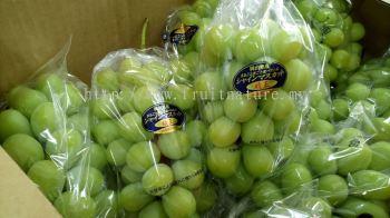 Grape Shine Muscat Okayama