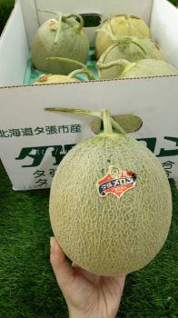 Melon Hokkaido