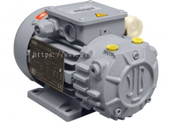 VD 3 Ultimate pressure: ≤ 120 and ≤ 150 mbar Pumping speed: 3÷3,6