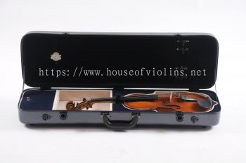 Violin case-Carbon Fibre