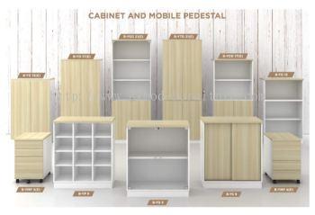 Wooden Cabinet & Mobile Pedestal