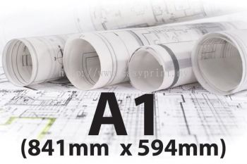 A1 (Size: 841mm x 594mm)