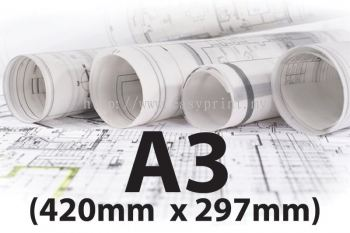A3 (Size: 420mm x 297mm)