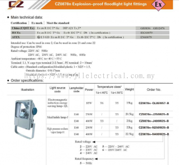 CZ EXPLOSION PROOF METAL HALIDE 250W & 400W FLOODLIGHT