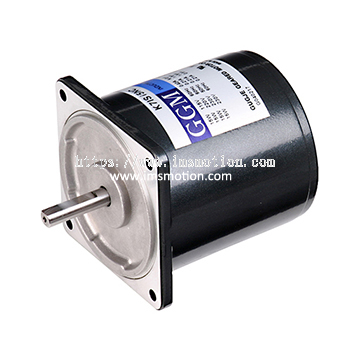 AC Induction Motor 25W