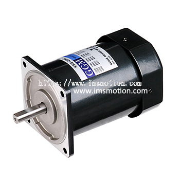 AC Induction Motor 60W
