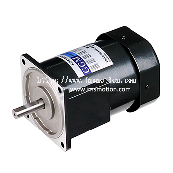 AC Induction Motor 120W
