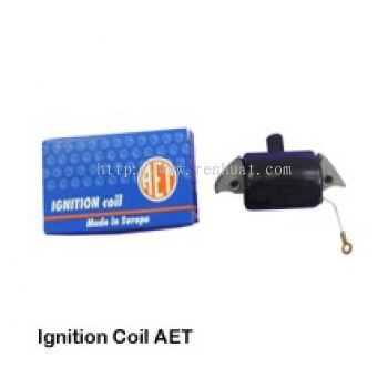 070 Ignition Coil