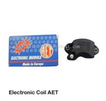 070 Electronic Coil