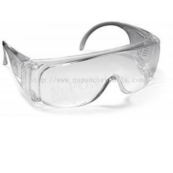 SERIES 2000 VISITOR SAFETY EYEWEAR / Clear Lens