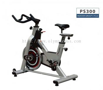 Impulse PS 300 Spin bike