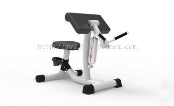 Biceps Curl/Triceps Extension RL8103