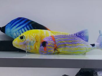 Cat Toys-Rainbow Fish (CFBLUE-15)