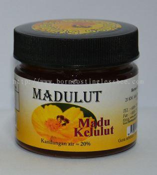 Madu Kelulut (Òø·äÃÛ)