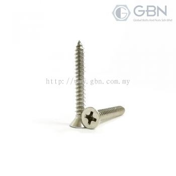 Flat Head (CSK) Philips Self Tapping Screw Din 7982