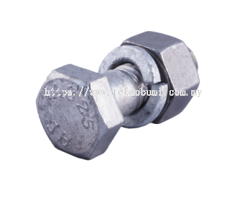 Galvanized Screw & Bolt