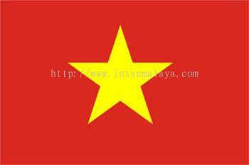 Vietnam Demographics