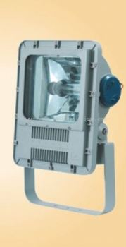 Zone 2 HID Floodlight